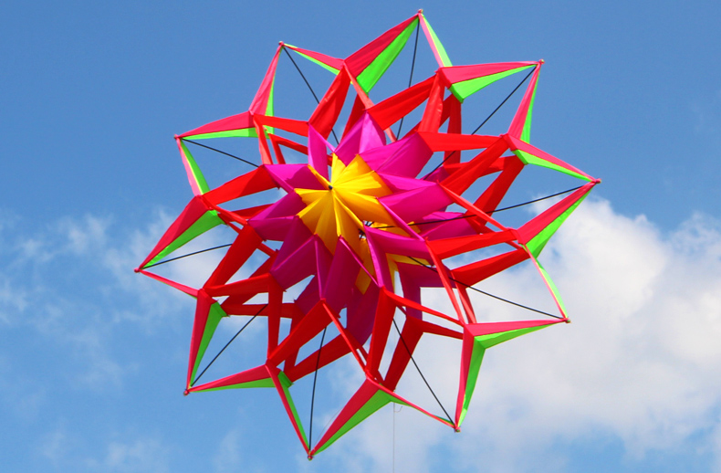 3d colorful lotus flower kite single line outdoor toy flying for visit my ebay store mightylinksfo