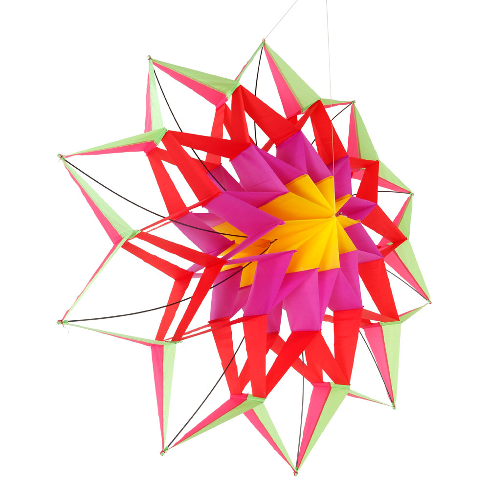 3d Colorful Lotus Flower Kite Single Line Outdoor Toy Flying For